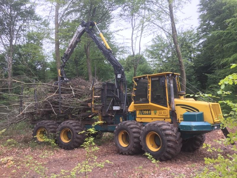 Udkørsel af træ