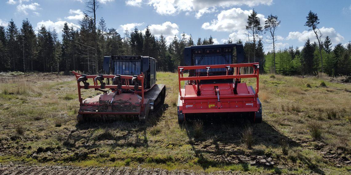 Grenknusning Brdr Willemoes Skovservice